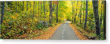 Autumn, Macedonia Brook State Park Canvas Print by Panoramic Images
