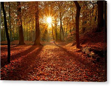Autumn Magic Canvas Print