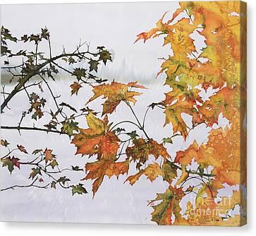 Autumn Maples Canvas Print by Carolyn Doe