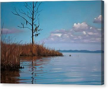 Autumn Marsh Reeds Canvas Print