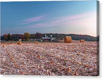Autumn Memories Canvas Print by Todd Klassy