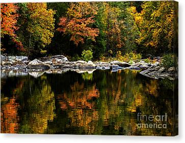 Autumn Middle Fork River Canvas Print by Thomas R Fletcher