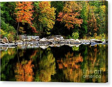 Autumn Middlle Fork River Canvas Print by Thomas R Fletcher