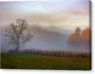 Autumn Mist Canvas Print by Rick Berk
