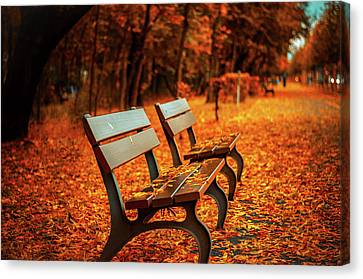 Park Benches Canvas Print - Autumn Moments by Happy Home Artistry