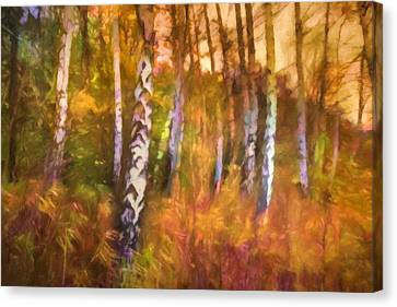 Autumn Mood Canvas Print by Lutz Baar
