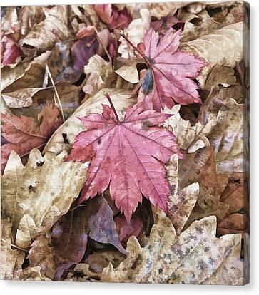 Aging Canvas Print - Autumn Mood by Mariia Kalinichenko