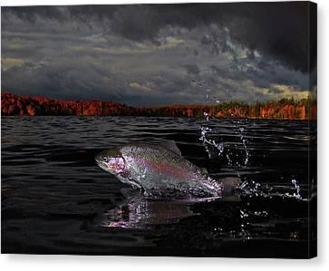 Autumn Morn Canvas Print by Brian Pelkey