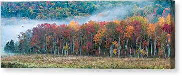 Autumn Morning Mist Canvas Print by Brian Caldwell