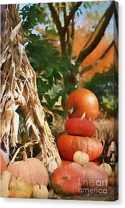 Autumn On Display Canvas Print