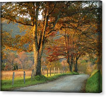 Autumn On Sparks Lane Canvas Print by TnBackroadsPhotos