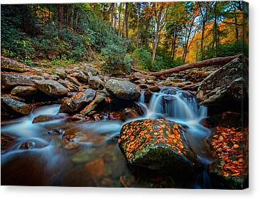 Autumn On The Chimney Tops Trail Canvas Print by Rick Berk