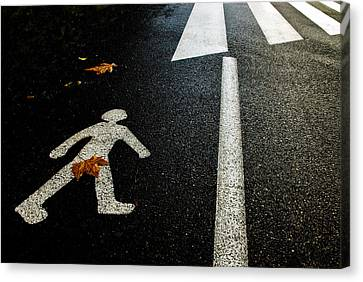 Autumn On The Road Canvas Print by Kikroune (christian R.)