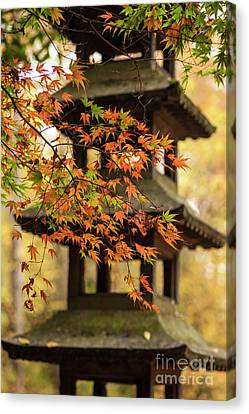Autumn Pagoda Canvas Print by Mike Reid