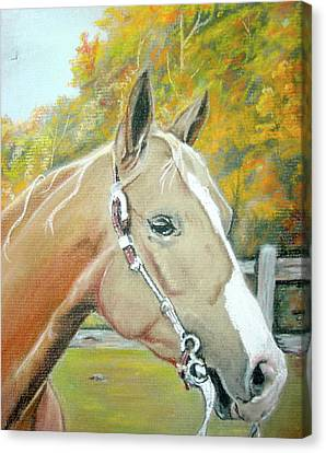 Autumn Palomino Canvas Print by Crystal  Harris-Donnelly
