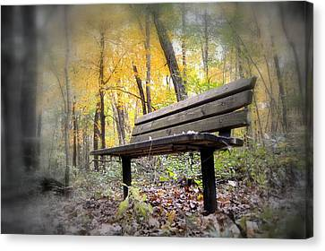 Autumn Park Bench Canvas Print by Bonfire Photography