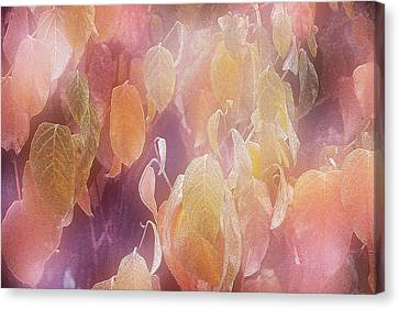 Autumn Patterns Canvas Print