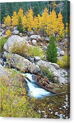 Canvas Print featuring the photograph Autumn Peace by Gary Lengyel