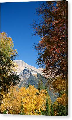 Autumn Peaks Canvas Print by Lawrence Boothby