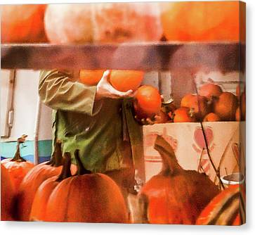 Autumn Plenty -  Canvas Print