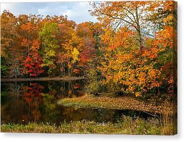 Autumn Pond Reflections Canvas Print by Andrew Kazmierski