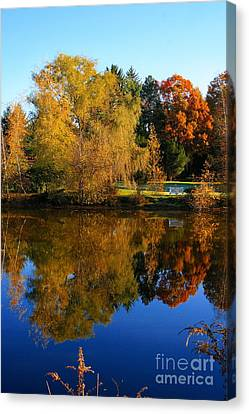 Autumn Pond Scene Canvas Print