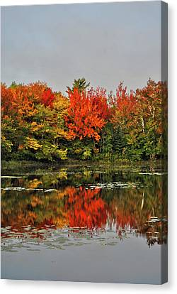 Autumn Portrait Canvas Print by Kathleen Sartoris