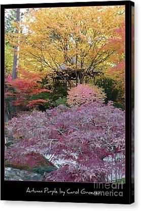 Autumn Purple Canvas Print by Carol Groenen