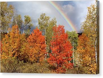 Kathleen Canvas Print - Autumn Rainbow by Kathleen Bishop
