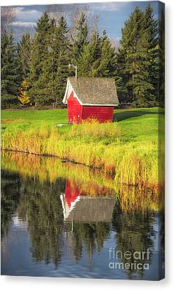Autumn Red Canvas Print by Ian McGregor