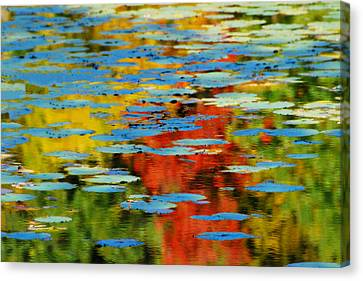 Canvas Print featuring the photograph Autumn Lily Pads by Diana Angstadt
