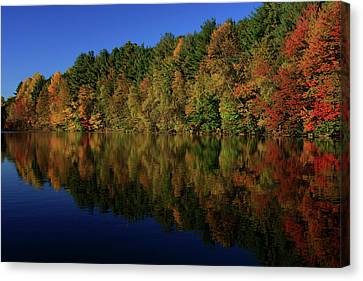 Autumn Reflection Of Colors Canvas Print by Karol Livote