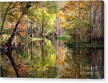 Autumn Reflection On Florida River Canvas Print