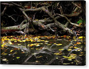 Autumn Reflection Canvas Print