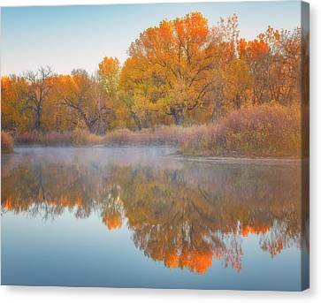 Autumn Reflections Canvas Print by Darren White