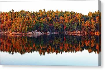 Canvas Print featuring the photograph   Autumn Reflections by Debbie Oppermann