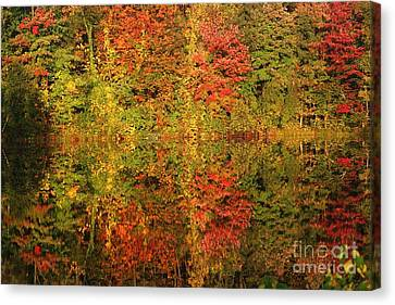 Canvas Print featuring the photograph Autumn Reflections In A Pond by Smilin Eyes  Treasures