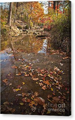 Autumn Reflections Canvas Print by Iris Greenwell