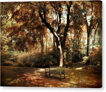 Dappled Light Canvas Print - Autumn Repose by Jessica Jenney