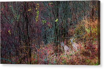 Autumn Ridge Canvas Print by Karen Wiles
