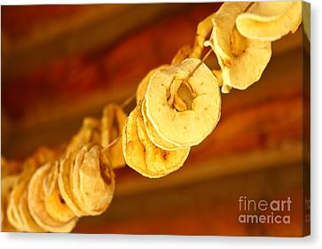 Autumn Rings Of Gold Canvas Print