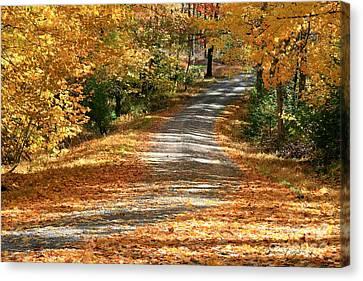 Autumn Road Canvas Print by Debra Straub