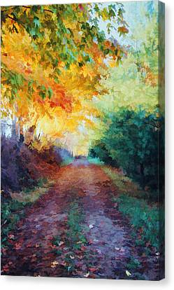 Canvas Print featuring the photograph Autumn Road by Diane Alexander