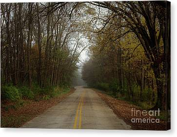 Autumn Road Canvas Print by Inspired Arts