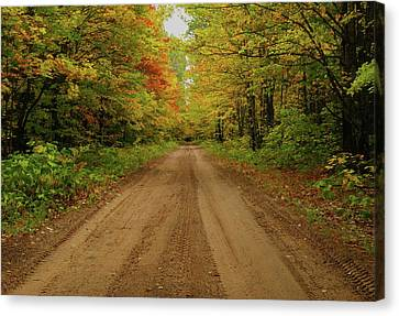 Autumn Road Canvas Print by Michael Peychich