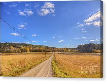 Autumn Road Canvas Print by Veikko Suikkanen