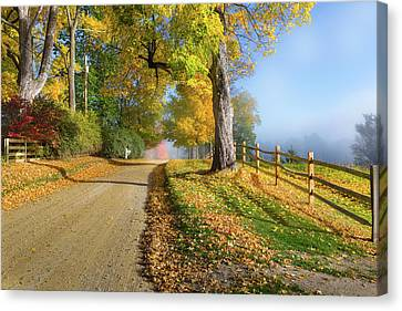 Autumn Rural Road Canvas Print by Bill Wakeley