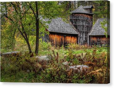 Autumn Rustic 2016 Canvas Print by Bill Wakeley