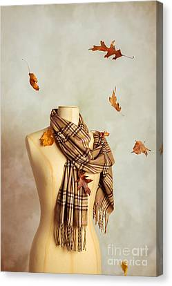 Autumn Scarf Canvas Print by Amanda Elwell