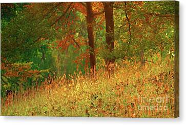Autumn Scene In The Forest Canvas Print by Yali Shi